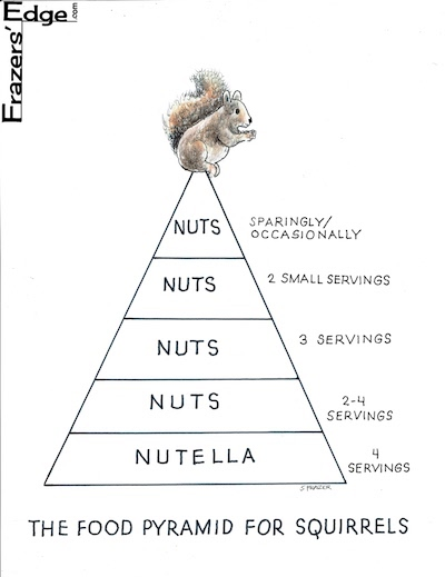 Squirrel Pyramid LOGO