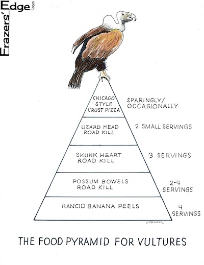 Vultures Food Pyramid LOGO